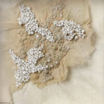 microcosme-moisissures-broderie-design-textile