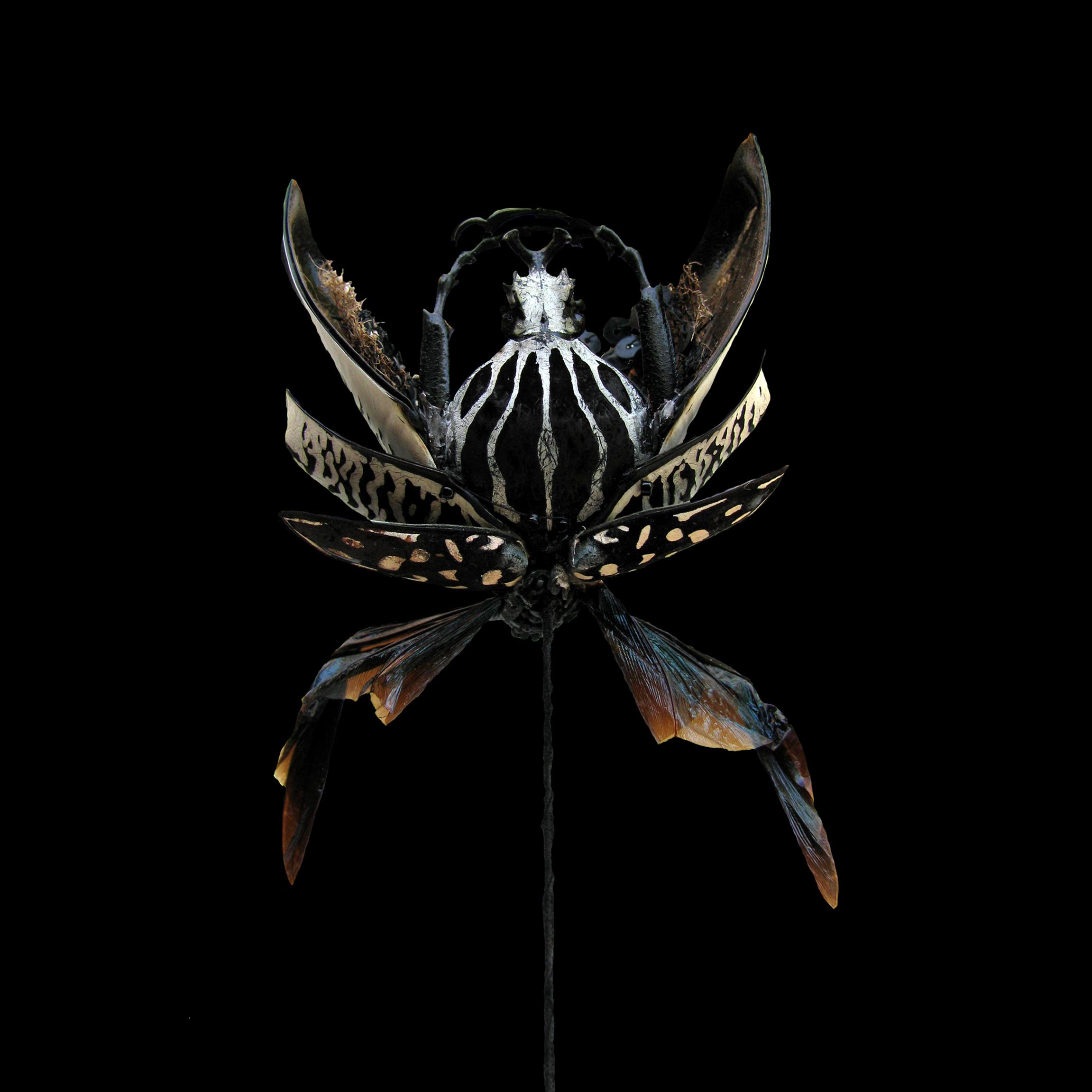 élytrée-série-des-fleurs-chimères-sculpture-textile-broderie