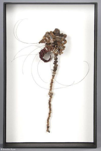 Bourdon. Série des fleurs insectes.