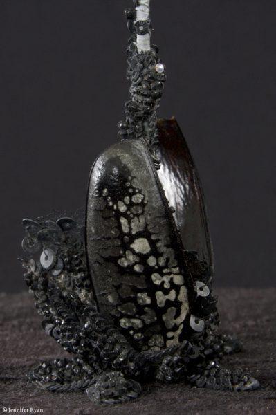 Orchidée Noire, détail bulbe
