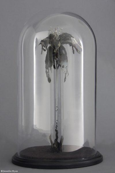 Orchidée Noire, sous globe de verre soufflé