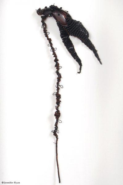 Iris. Série des fleurs insectes.