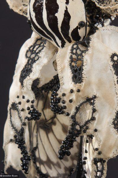 Phalaenopsis, prix Liliane Bettencourt pour l'intelligence de la main 2008