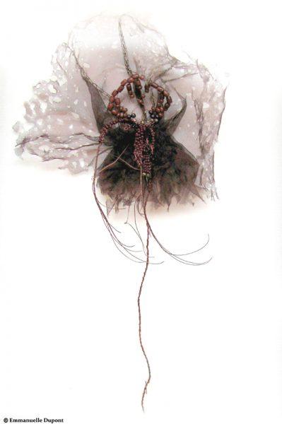 Orchidacea. Série des fleurs insectes.