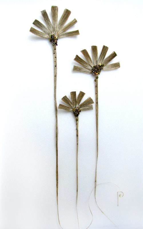 fleur de lin n°1